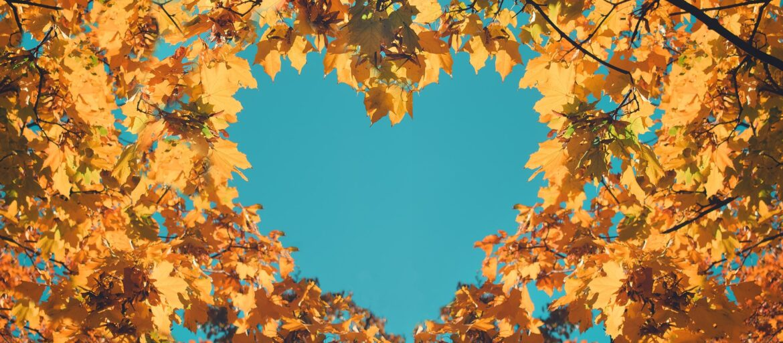 Autumn fall love background