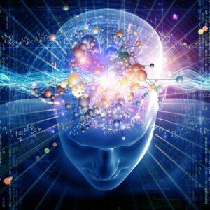 Мозъчните вълни – ключът към осъзнат живот - ОНЛАЙН